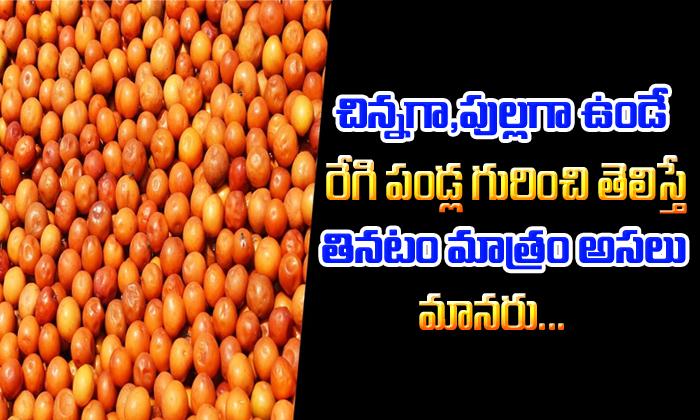 Surprising Health Benefits Regi Pallu-TeluguStop.com