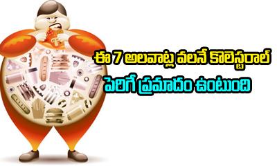 TeluguStop.com - 7 Habits That Raise Bad Cholesterol Levels-Telugu Health Tips-Telugu Tollywood Photo Image