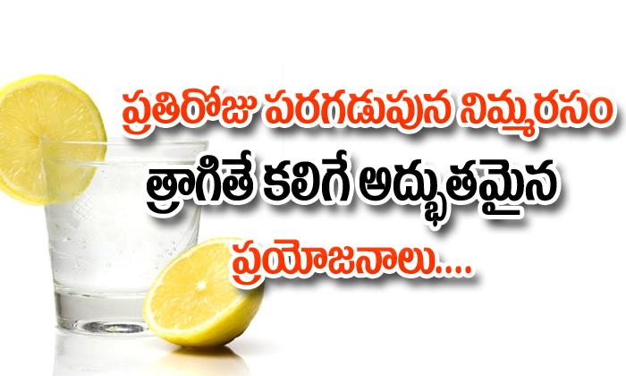 Health Benefits Of Drinking Lemon Water In The Morning-ప్రతి రోజు పరగడుపున నిమ్మరసం త్రాగితే కలిగే అద్భుతమైన ప్రయోజనాలు-Telugu Health-Telugu Tollywood Photo Image-TeluguStop.com