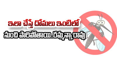 Simple Tips To Get Rid Of Mosquitoes-TeluguStop.com