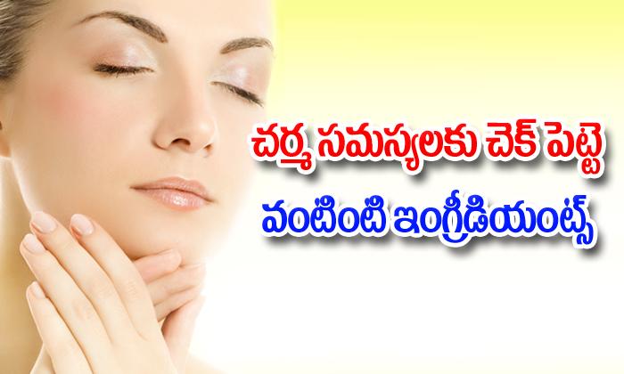 Best Ingredients For Your Natural Skin Care-చర్మ సమస్యలకు చెక్ పెట్టె వంటింటి ఇంగ్రీడియెంట్స్-Telugu Health-Telugu Tollywood Photo Image-TeluguStop.com