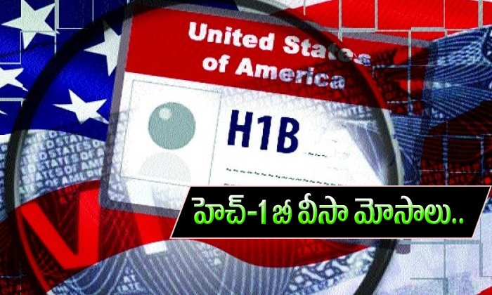 H1b Visa Frauds-TeluguStop.com