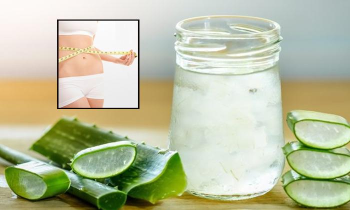 Benefits Of Aloe Vera Juice For Weight Loss-TeluguStop.com