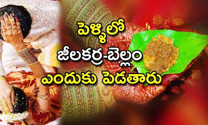 Significanceof Jeelakarra Bellam In Marriages-TeluguStop.com
