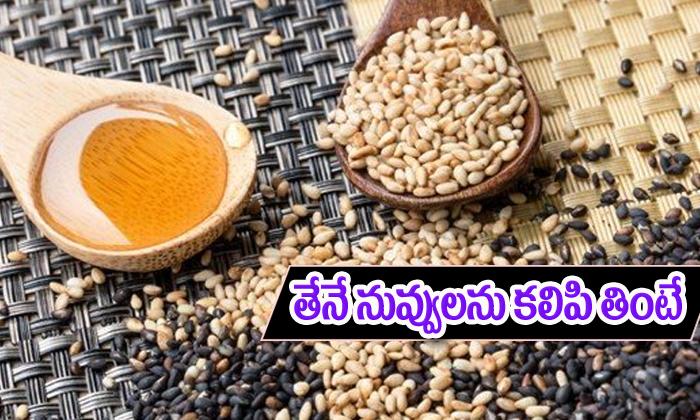 Sesame Seeds And Honey Health Benefits-ఉదయం పరగడుపున తేనే,నువ్వులను కలిపి తింటే షాకింగ్ ప్రయోజనాలు-Telugu Health-Telugu Tollywood Photo Image-TeluguStop.com