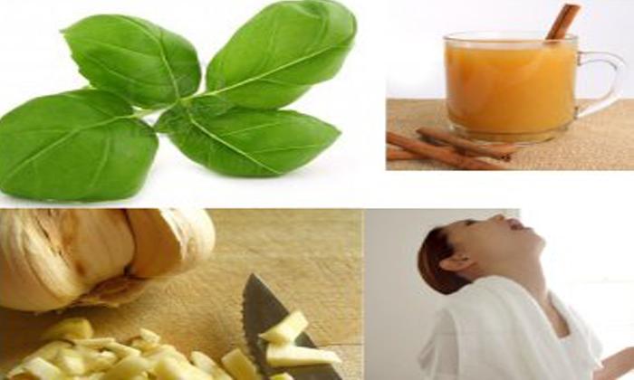 Tulsi Green Tea-TeluguStop.com