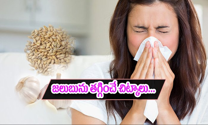 Ayurvedic Remedies For Fighting The Cold-జలుబును తగ్గించే అద్భుతమైన ఆయుర్వేద చిట్కాలు-Telugu Health-Telugu Tollywood Photo Image-TeluguStop.com
