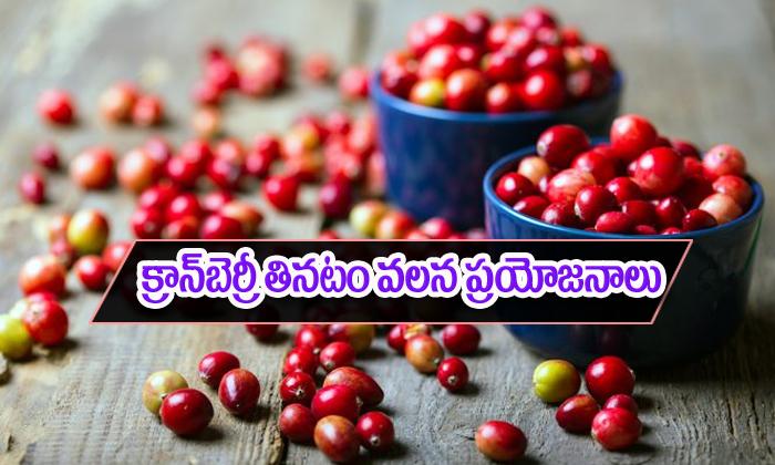 Cranberries Health Benefits-TeluguStop.com