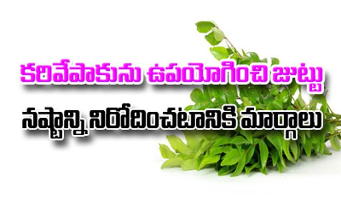 How To Stop Hair Loss With Curry Leaves-కరివేపాకును ఉపయోగించి జుట్టు నష్టాన్ని నిరోదించటానికి మార్గాలు-Telugu Health - తెలుగు హెల్త్ టిప్స్ ,చిట్కాలు-Telugu Tollywood Photo Image-TeluguStop.com
