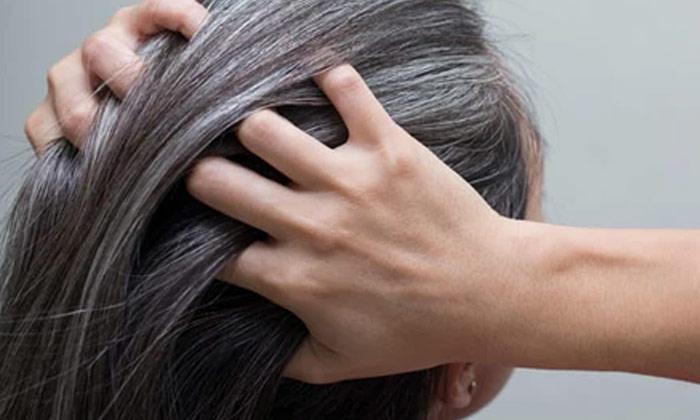 White Hairblack Hair Naturally-TeluguStop.com