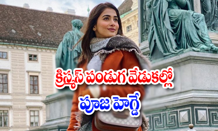 Tollywood Actresses Pooja Hegde Latest Photo Collection-TeluguStop.com