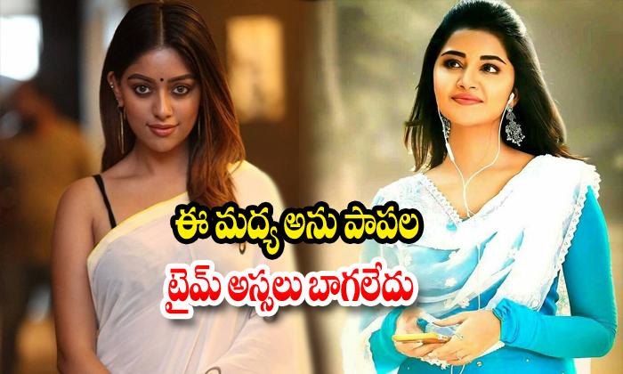 Latest Newsabout Anupama Parameswaran And Anu Emmanuel-TeluguStop.com