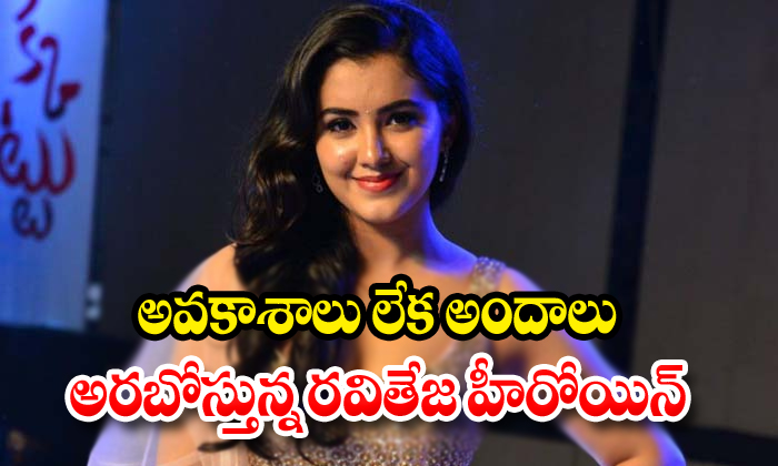 There Is No Movie Offers In Nela Ticket Fame Malvika Sharma Hand-TeluguStop.com