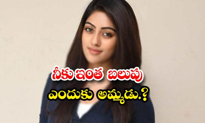 Anu Emmanuel Disrespects Andrea On Sets-TeluguStop.com