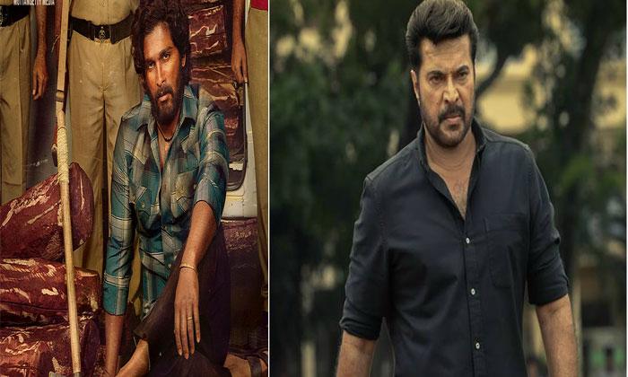 Sukumar Allu Arjun Pushpa Malayam Star Mammootty-TeluguStop.com