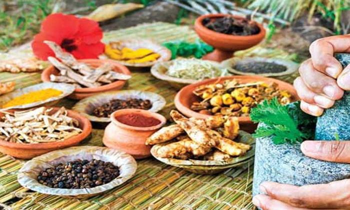 Telugu Ginger, Health Tips, Immunity Power, Lemon, Orange, Tumaric, Vitam C-Telugu Health - తెలుగు హెల్త్ టిప్స్ ,చిట్కాలు