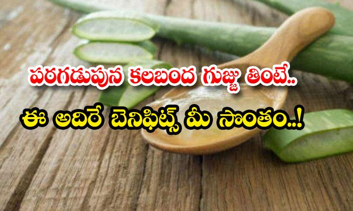 TeluguStop.com - Health Benefits Of Eating Aloe Vera In Early Morning