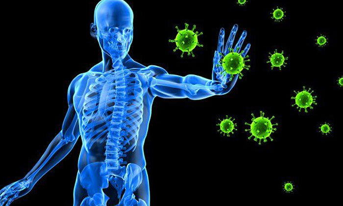 Telugu Cloves, Coronavirus, Covid-19, Health Benefits Of Cloves, Health News, Health Tips, Immunity Power, Latest News-