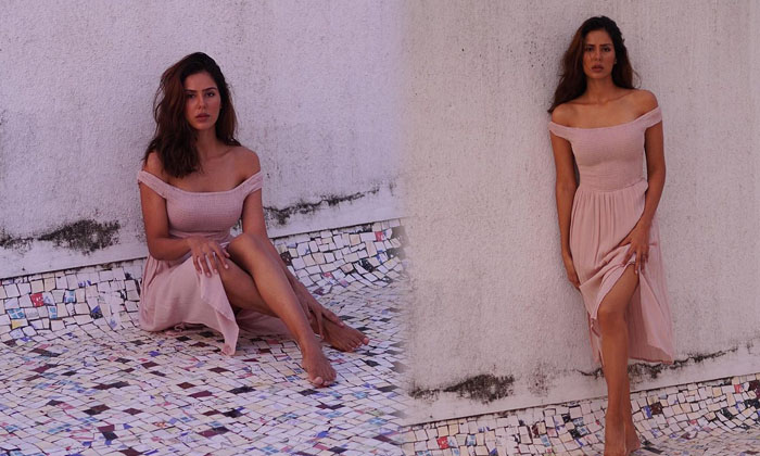 Amazing Pictures Of Glamorous Actress Sonam Bajwa-telugu Actress Hot Photos Amazing Pictures Of Glamorous Actress Sonam High Resolution Photo