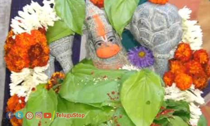 Telugu Anjaneya Swamy Pooja, Betel Leaf, Pooja Vidhanam, Tuesday-Telugu Bhakthi