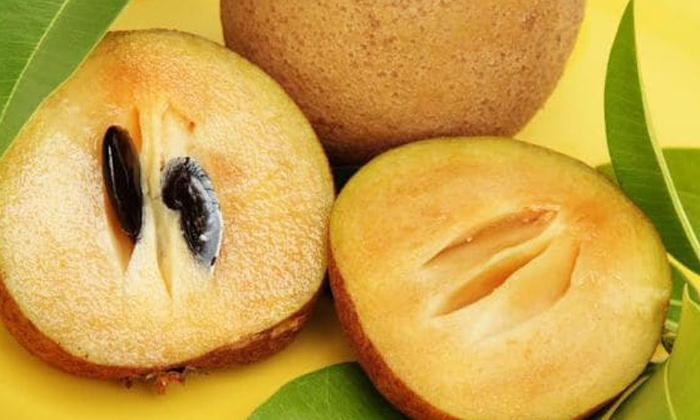 Sapota Pregnant Lady Health Tips Chikoo Fruit-గర్భిణీలు సపోటా తింటే ఏం అవుతుందో తెలుసా-Latest News - Telugu-Telugu Tollywood Photo Image-TeluguStop.com