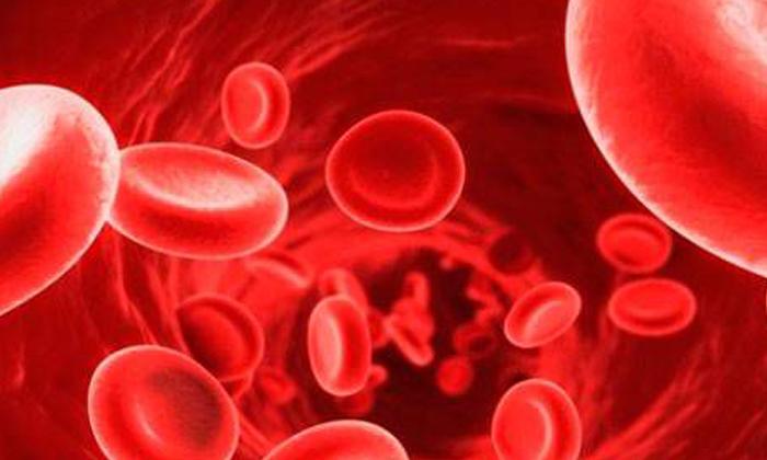 Telugu Blood Pressure, Diabetes, Fennel Seeds, Health, Health Benefits Of Fennel Seeds, Health Tips, Immunity Power, Latest News-Telugu Health - తెలుగు హెల్త్ టిప్స్ ,చిట్కాలు