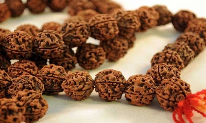 Which Rudraksha You Should Wear According To Your Zodiac Sign-TeluguStop.com
