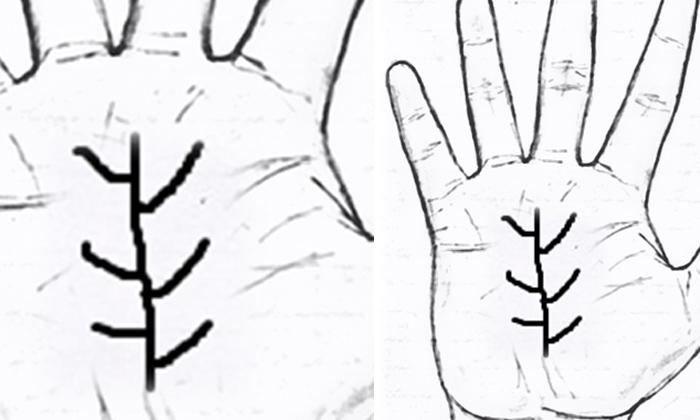 Telugu Good Sign, Hindu Believes, Palm Lines, Palmistry, Signs On Palm, Swastika Sign, Zodic Signs-Telugu Bhakthi