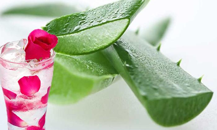 Telugu Beauty, Beauty Tips, Latest News, Skin Care, Wrinkles, Wrinkles On Face-Telugu Health