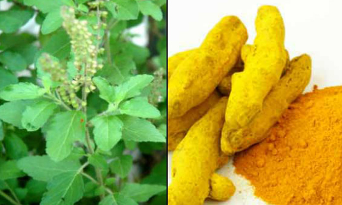 Telugu Beauty, Beauty Tips, Benefits Of Steaming, Home Remedies, Latest News, Pimples, Skin Care, Steaming-Latest News - Telugu