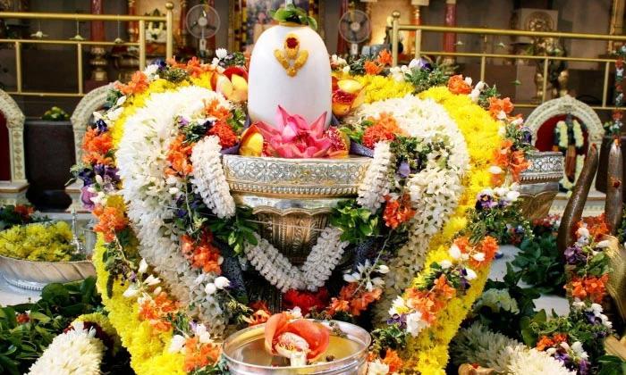 What Are The Benefits Of Worshiping Shivalingam Rudra Parayanam-TeluguStop.com