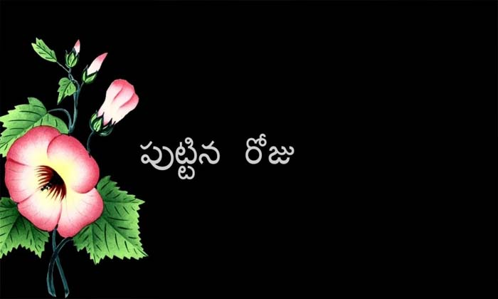 Specility Of Birthday In Hindu Rituals-పుట్టిన రోజు ప్రత్యేకత ఏంటి ఎందుకు జరుపుకోవాలి-Latest News - Telugu-Telugu Tollywood Photo Image-TeluguStop.com