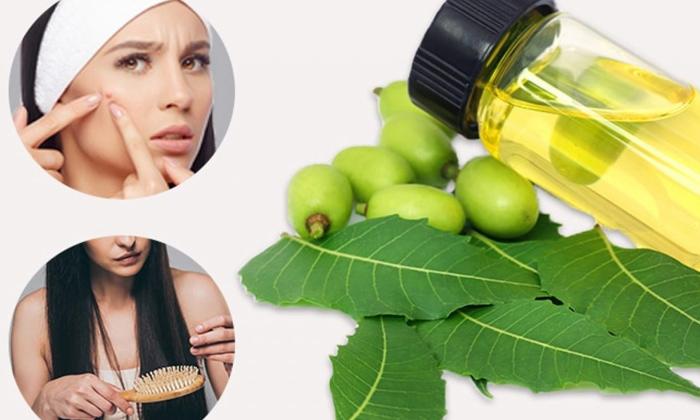 Telugu Beauty Tips Beauty, Benefits Of Neem Oil, Hair, Hair Care, Hair Loss, Latest News, Neem Oil-Telugu Health - తెలుగు హెల్త్ టిప్స్ ,చిట్కాలు