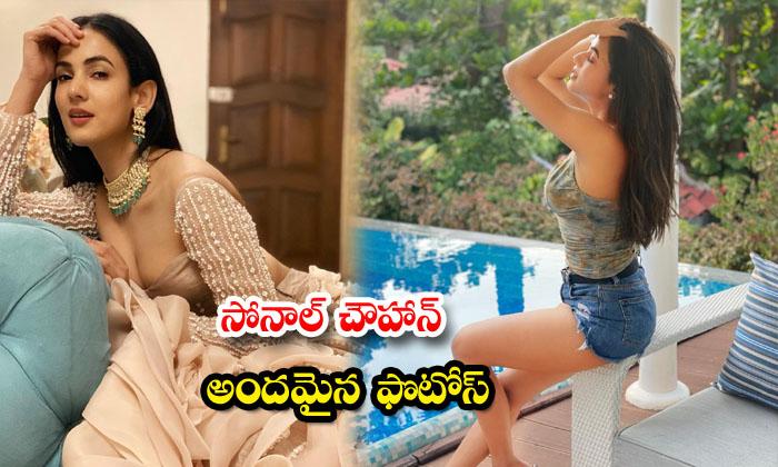 Actress Sonal Chauhan Latest Hd Images-telugu Actress Hot Photos Actress Sonal Chauhan Latest Hd Images - Telugu Hd Wa High Resolution Photo