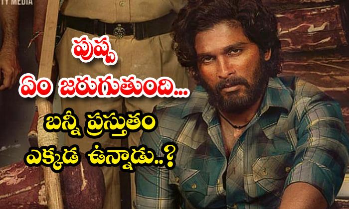 Allu Arjun And Sukumar Movie Pushpa Shooting Update-TeluguStop.com