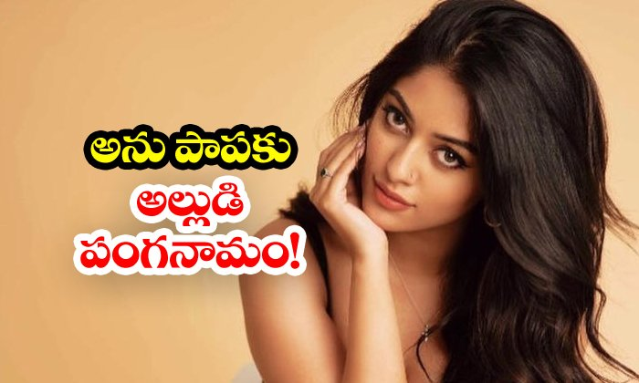 TeluguStop.com - Anu Emmanuel Paid Only Part Payment For Alludu Adhurs