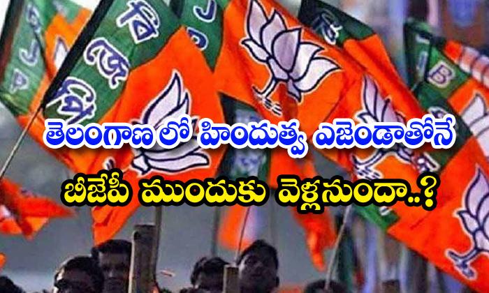 TeluguStop.com - Bjp Hindus Sentiment Ayodhya Ramalayam