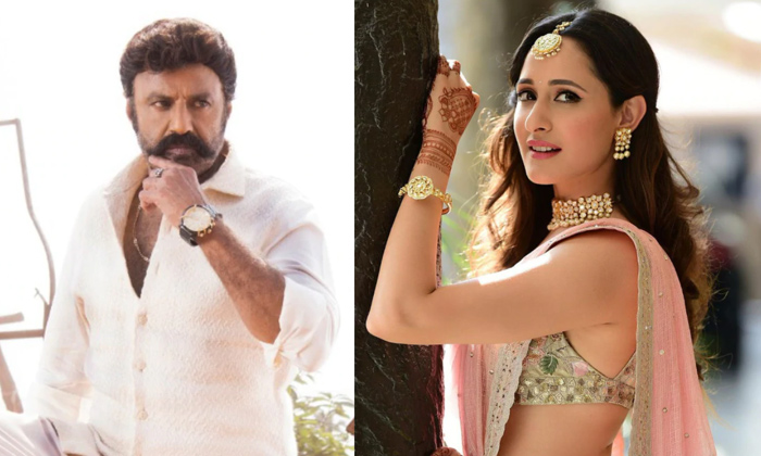 Telugu Balakrishna, Balakrishna And Boyapati Srinu Movie Shooting Updates, Balakrishna With Pragya Jaiswal, Bb3 Movie, Boyapat, Boyapati, Pragya Jaiswal, Saradhi Studio, Simha Movie-Movie