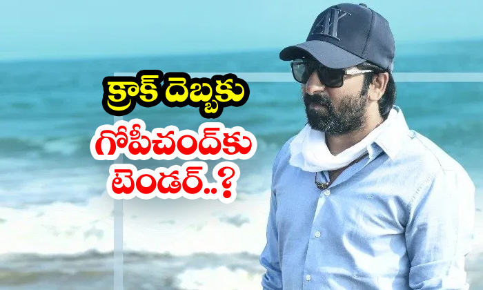 TeluguStop.com - Gopichand Malineni Next Movie With Mythri Movie Makers