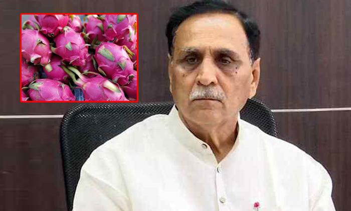 Telugu Another Name, Bjp, Bjp Parety, Changed Name, Dragon Fruit, Dragon Fruit Name Change, Gujarat Cm Rupani, Gujarat Cm Rupani Demands Dragon Fruit Name Change To Kamalam, Kamalam-Latest News - Telugu