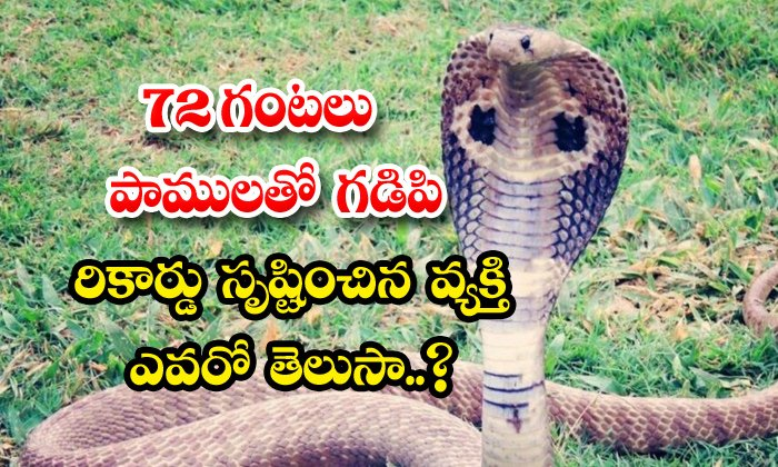 TeluguStop.com - Man Creates Record Spending 72hrs Time With Snake