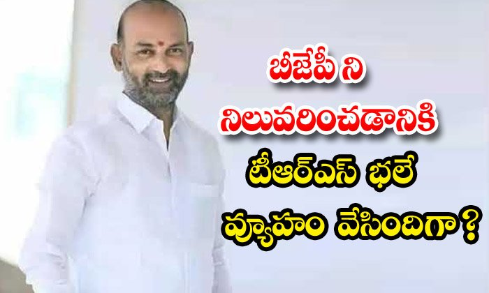 Is Trs A Good Strategy To Stop The-TeluguStop.com