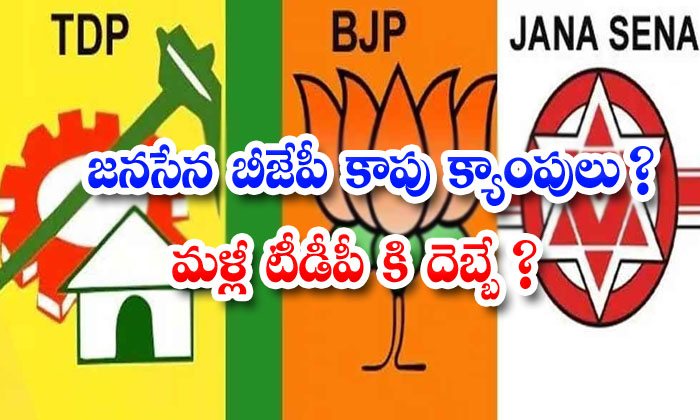 TeluguStop.com - It Is The Telugu Desam Party That Has Lost The Efforts Of The Bjp Janasena Parties To Support The Kapu Caste