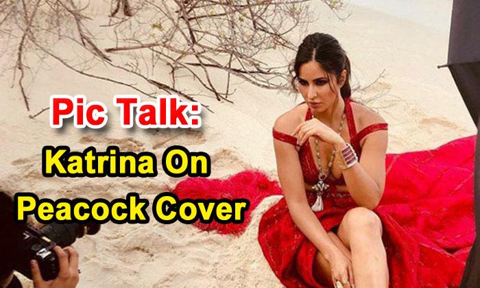 TeluguStop.com - Pic Talk: Katrina On Peacock Cover