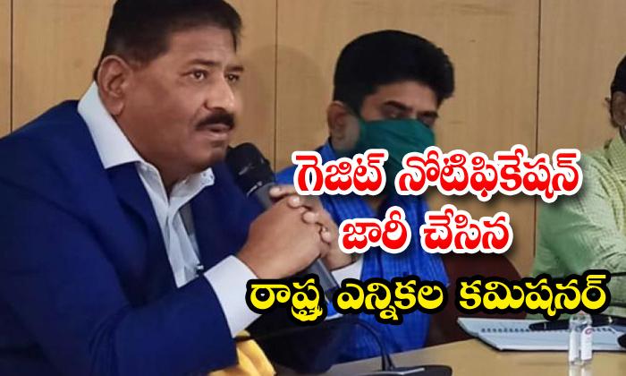 TeluguStop.com - Telangana Election Comissioner Release The Gazette Notification
