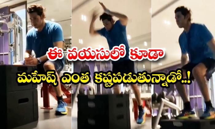 TeluguStop.com - Mahesh Babu Box Jumps Gym Workout Video