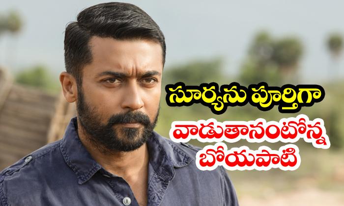 TeluguStop.com - Suriya To Do Movie With Boyapati Sreenu
