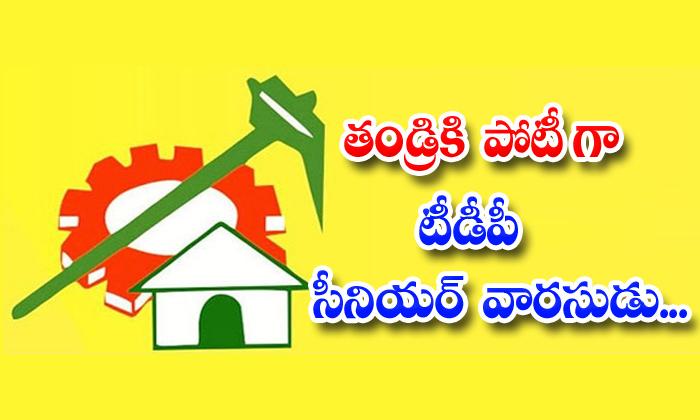 TeluguStop.com - Tdp Senior Chintakayala Ayannapatrudu Compete With Son Vijay