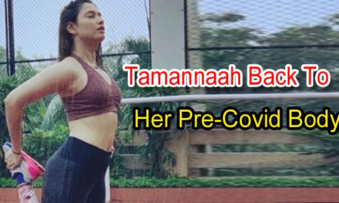 TeluguStop.com - Tamannaah Back To Her Pre-covid Body