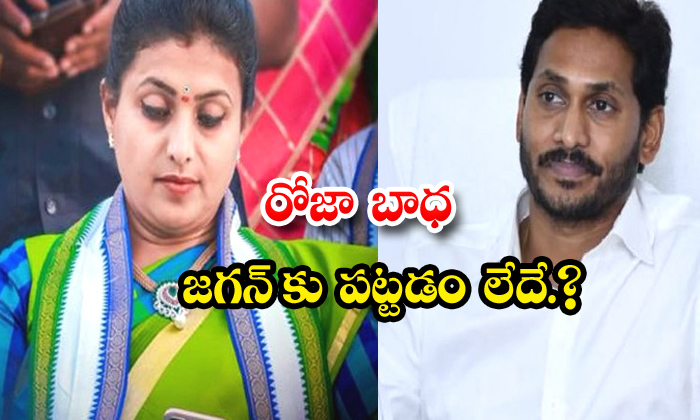 TeluguStop.com - Roja Tension Over Ycp Leaders And Ys Jagan Ignorance